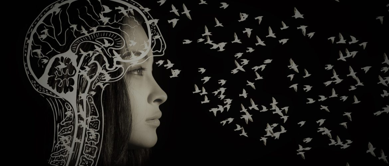 cerveau des filles autistes, AFFA